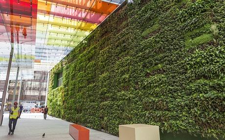 Mexico City Raises Green Awareness With Vertical Gardens